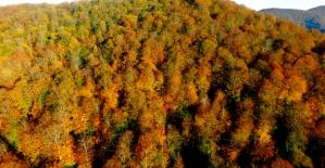 Nebiyan Dağı'nda sonbahar manzaraları