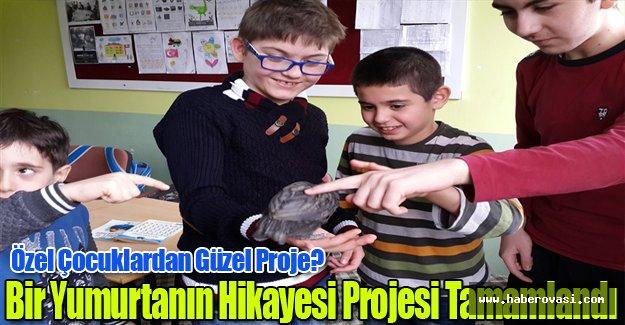 Özel Çocuklardan Güzel Proje