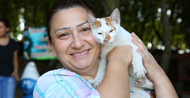 Kedi Kasabası`na Bayramda Yoğun İlgi