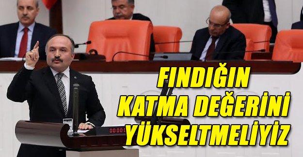 """ERHAN USTA """"FINDIKTA VERİM DÜŞÜK"""""""