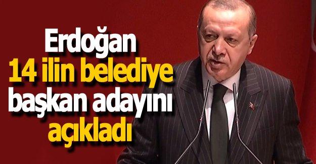 Erdoğan 14 ilin Belediye Başkan adayını açıkladı