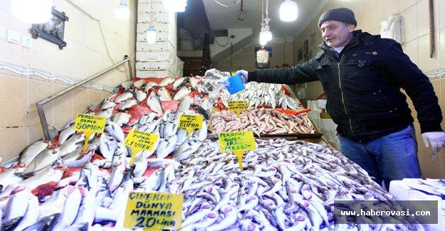 Samsun'da Balık İhracatı