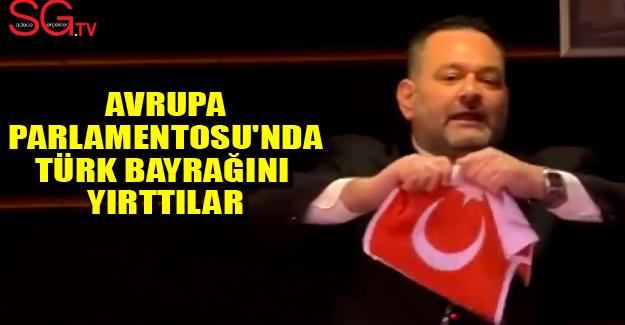 Avrupa Parlamentosu'nda Türk Bayrağını Yırttılar