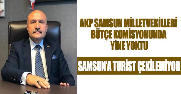 Samsun'a Turist Çekilemiyor