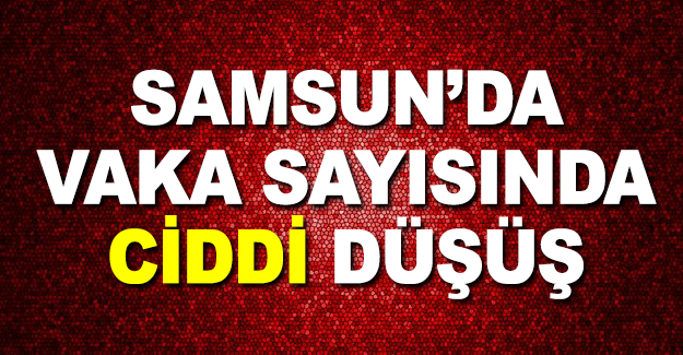 Samsun'da vaka sayısında düşüş