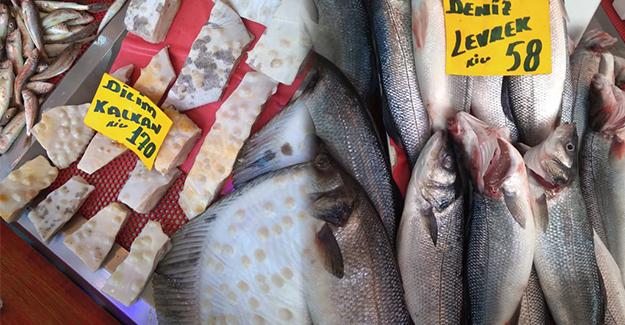 Atakum'da balık bol, dilim kalkan 170 tl!