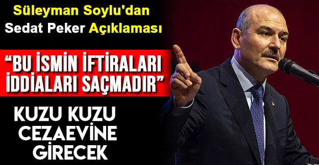 Süleyman Soylu'dan Sedat Peker Açıklaması