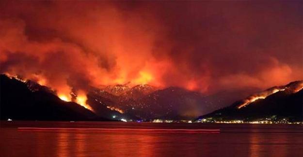 Orman Yangını İle Karşılaşınca Yapmamız Gerekenler
