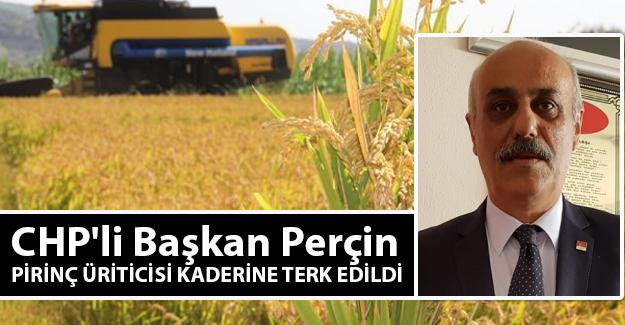 CHP'li Başkan Perçin pirinç üreticisi kaderine terk edildi