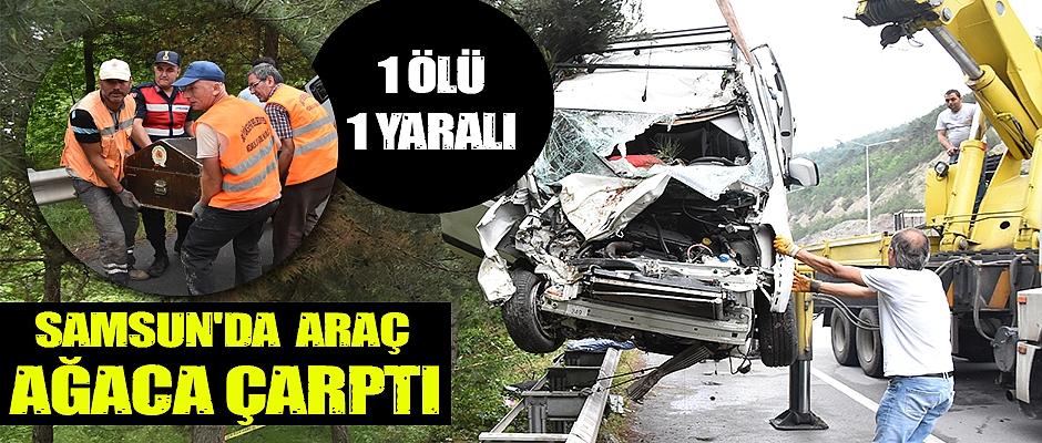 Samsun'da hafif ticari araç ağaca çarptı