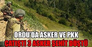 ORDU'DA ASKER VE PKK ÇATIŞTI 3 ASKER ŞEHİT DÜŞTÜ