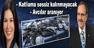 Kuş Cennetindeki katliamcı avcılar aranıyor