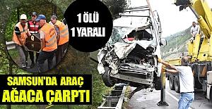 Samsun'da hafif ticari araç ağaca...