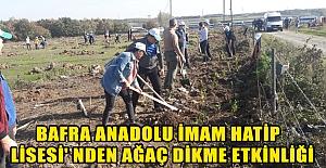 Bafra Anadolu İmam Hatip Lisesi' nden Ağaç Dikme Etkinliği
