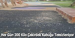Her Gün 200 Kilo Çekirdek Kabuğu Temizleniyor
