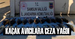 Samsun'da Kaçak avcılara göz açtırılmıyor