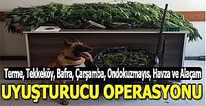 Samsun ilçelerinde uyuşturucu Operasyonu