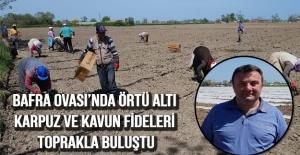 Bafra Ovası'nda örtü altı karpuz ve kavun fideleri toprakla buluştu
